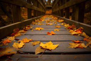 Spirituális őszben